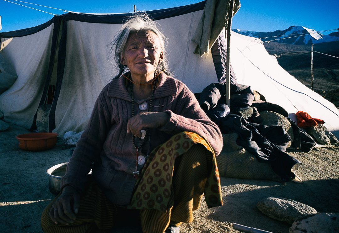 changpa nomad in ladakh