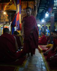 Dawn Prayers at Thiksey monastery, Ladakh