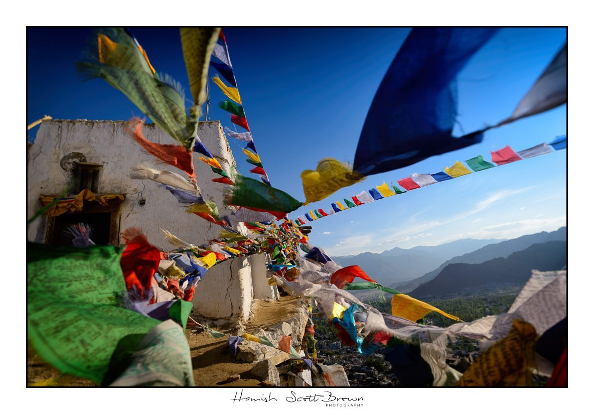 fluttering prayer flags at Leh Gompa in late afternoon sun © Hamish Scott-Brown