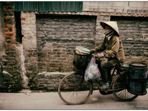 bicycle and conical hat in hanoi © Hamish Scott-Brown
