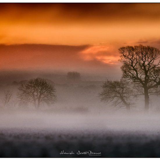 misty fields at dawn in winter warwickshire