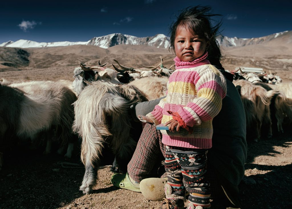Nomad child feeding goats in Ladakh © Hamish Scott-Brown