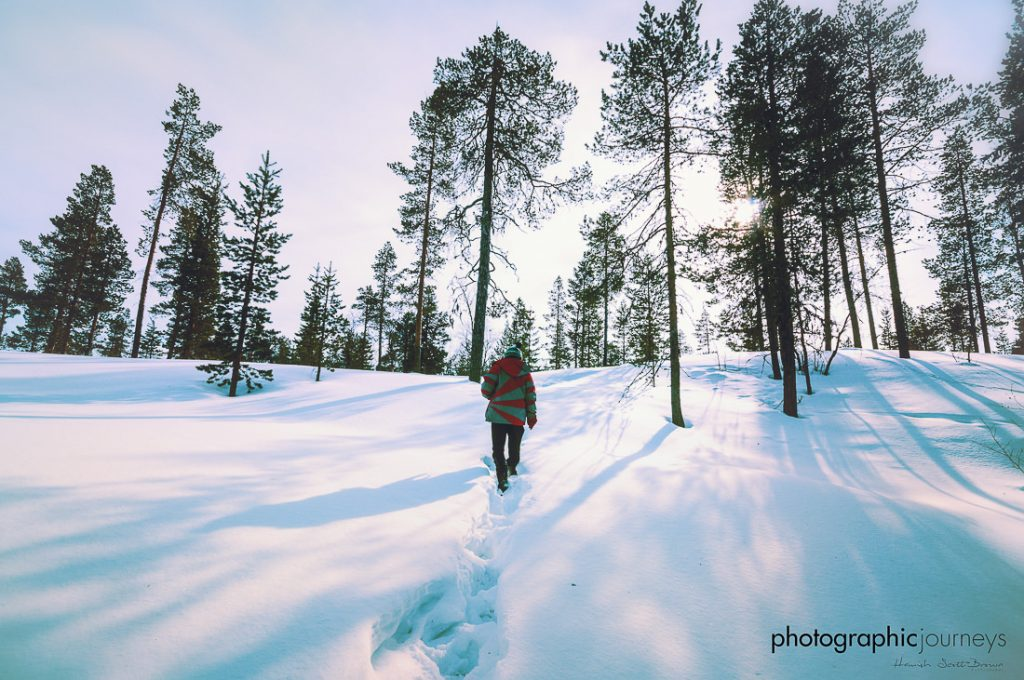 walking in snow landscape in northern finland © Hamish Scott-Brown