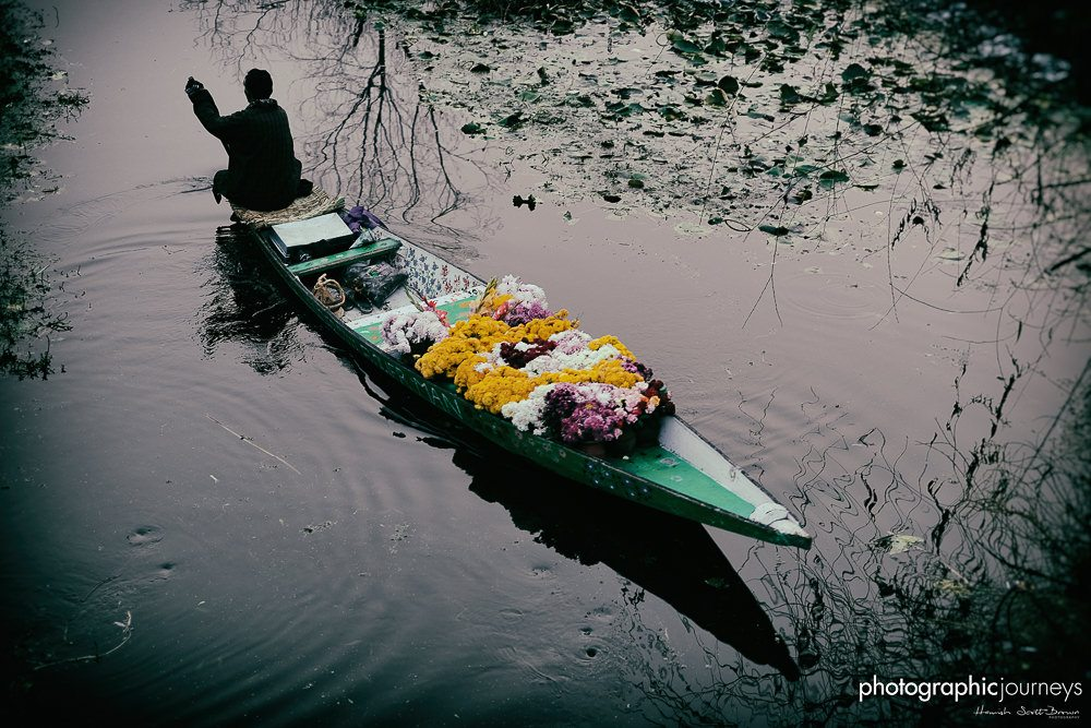 flower seller at dawn - the market on dal lake srinagar, photographic journeys ©Hamish Scott-Brown